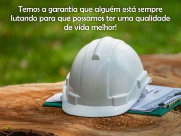 Parabéns aos Engenheiros Florestais pelo seu dia!