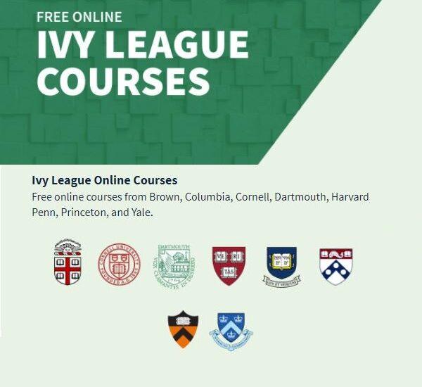 Harvard E Outras Universidades Dos Eua Oferecem Cursos Online Gratuitos Aeamvi